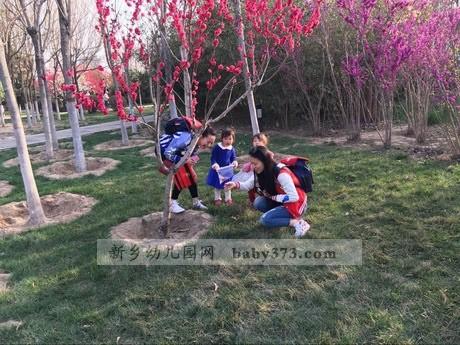 我和春天有个约会:新乡建业小哈佛金龙幼儿园